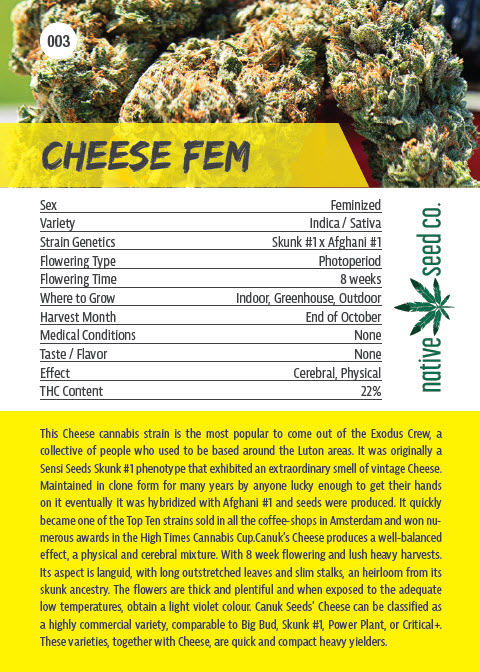 Back of Collector Seed Card by Native Seed - Cheese FEM