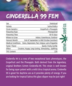Back of Collector Seed Card by Native Seed - Cinderella 99