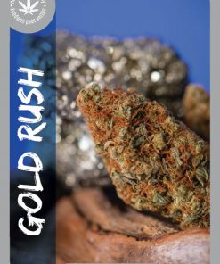 Premium Seed by Native Seed - Gold Rush