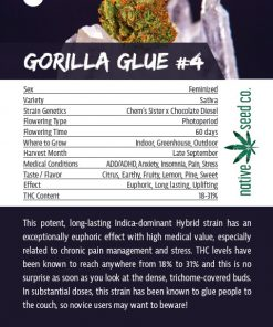 Back of Collector Seed Card by Native Seed - Gorilla Glue