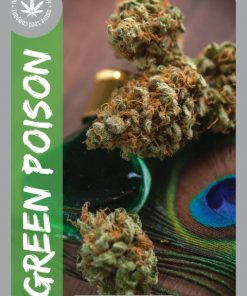 Premium Seed by Native Seed - Green Poison