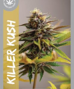 Premium Seed by Native Seed - Killer Kush