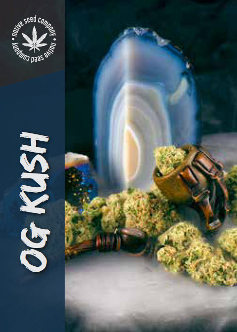 Native Seed Co. Collector Card - OG Kush
