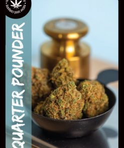 Premium Seed by Native Seed - Quarter Pounder